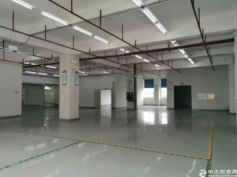 6000平方厂房空出,面积实在,价格优惠