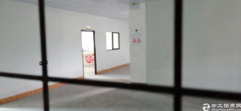 仲恺沥林新出标准厂房,一楼高7米,无公摊