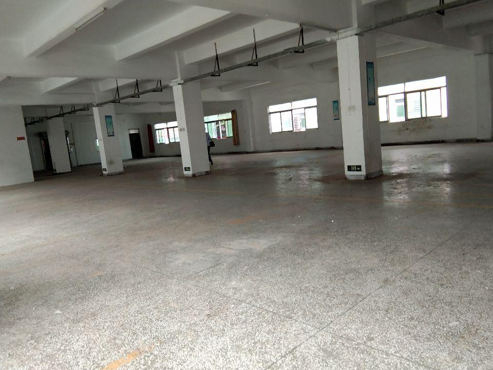 六约埔厦新出电商仓库厂房700平方带精装修出租,带红本和喷淋