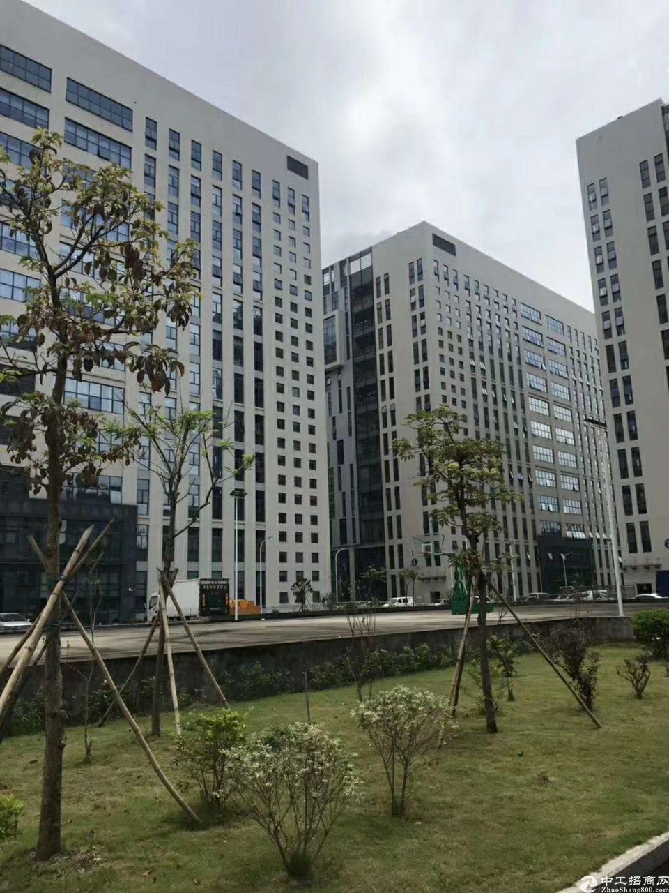 龙华大浪新百丽精装1050平厂房招租,面积实在,带消防喷林