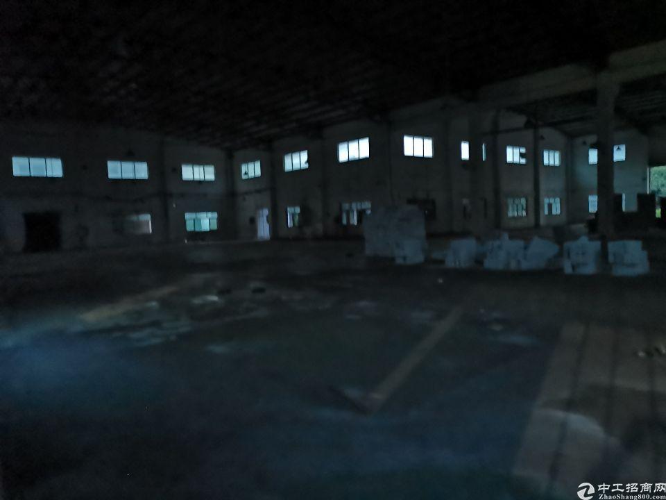 大岭山新出滴水八米4000平钢构厂房