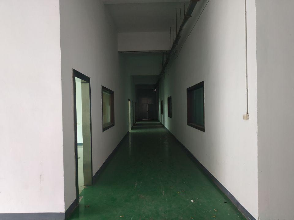 塘厦镇新出标准厂房1楼1000平方,带现成办公室