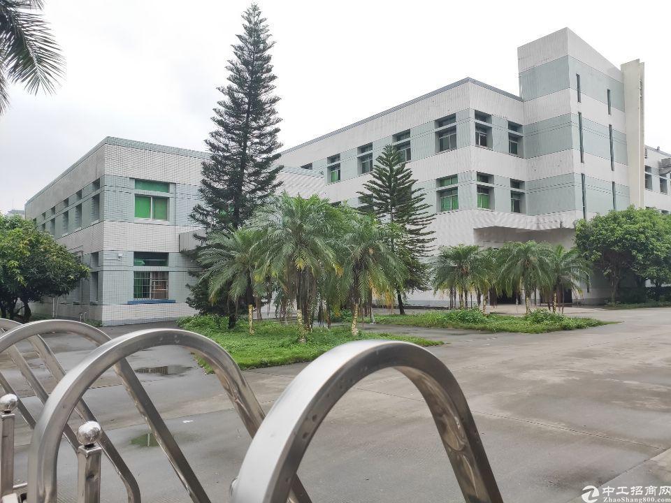 横沥三江原房东1800标准一楼高度6米带牛角和办公室