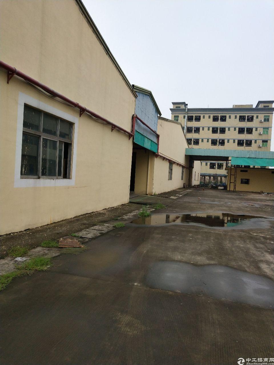 企石镇铁炉坑村2360平方出租