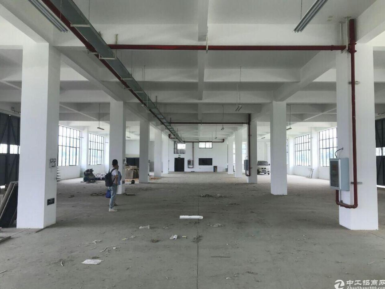 新洲阳逻成熟工业区,现房出售