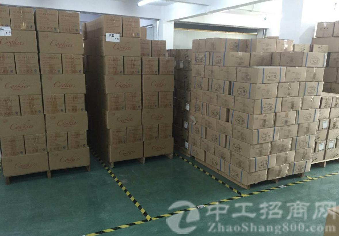 狮岭镇振兴村原房东厂房仓库出租1500平现成装修地坪漆
