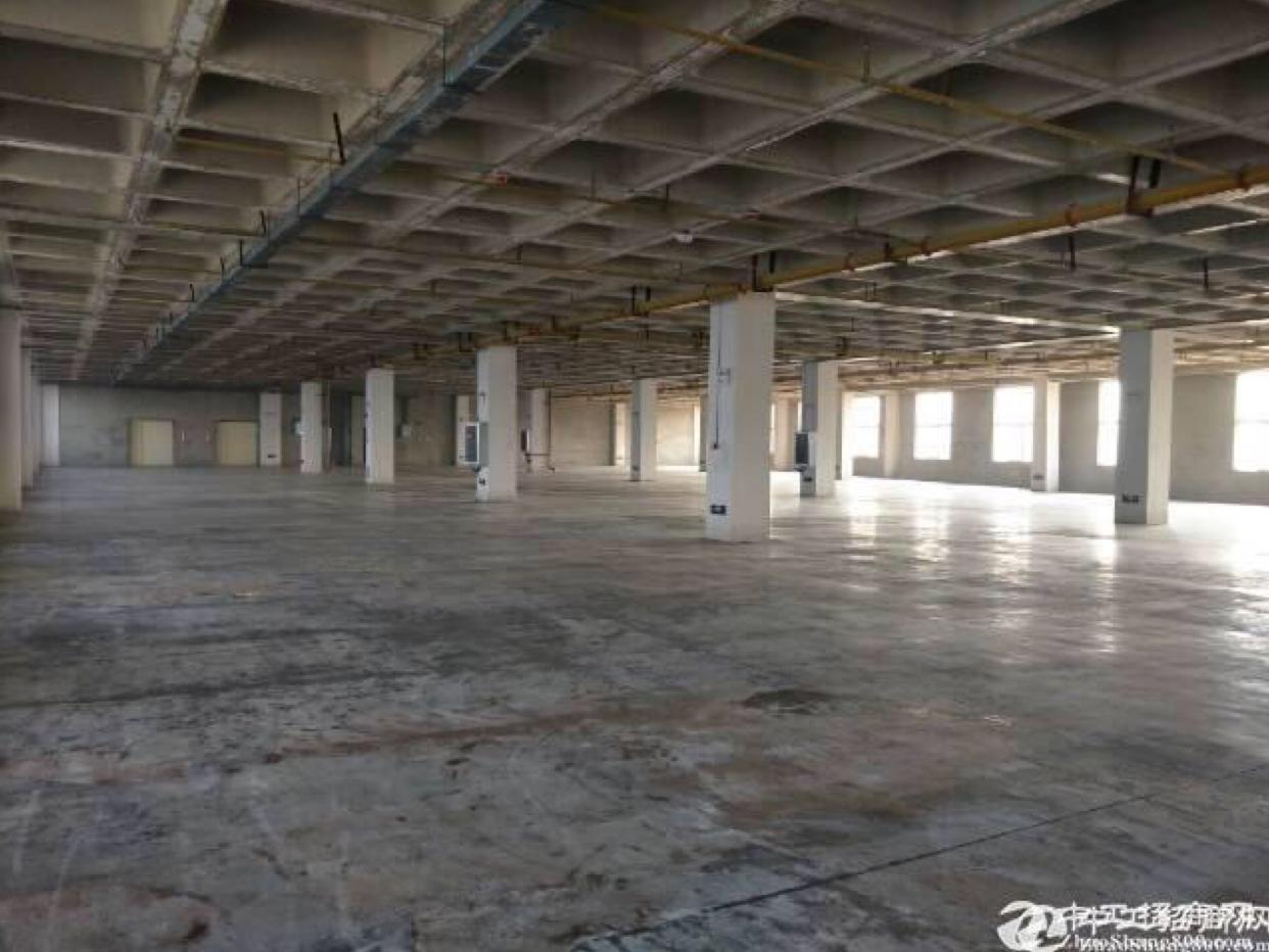 阳逻港大型工业园招商,生活配套设施齐全