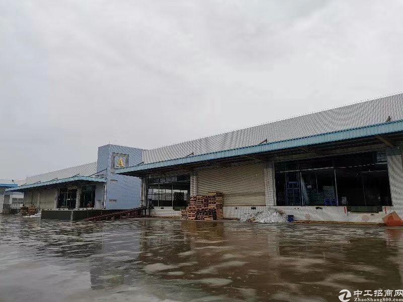 中堂标准高台仓库滴水十米证件齐全