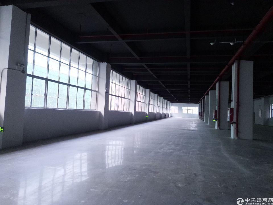 东莞新推出整栋红本按揭厂房出售
