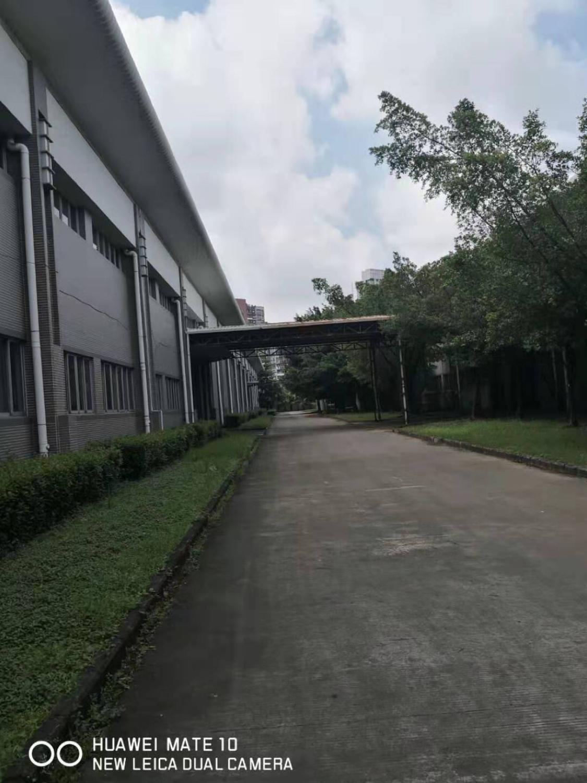 黄江钢构15000平方红本原房东厂房出租带消防喷淋