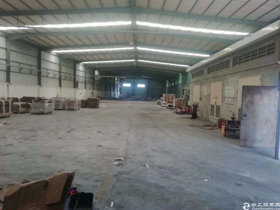7茶山原房东独院钢构厂房2500平