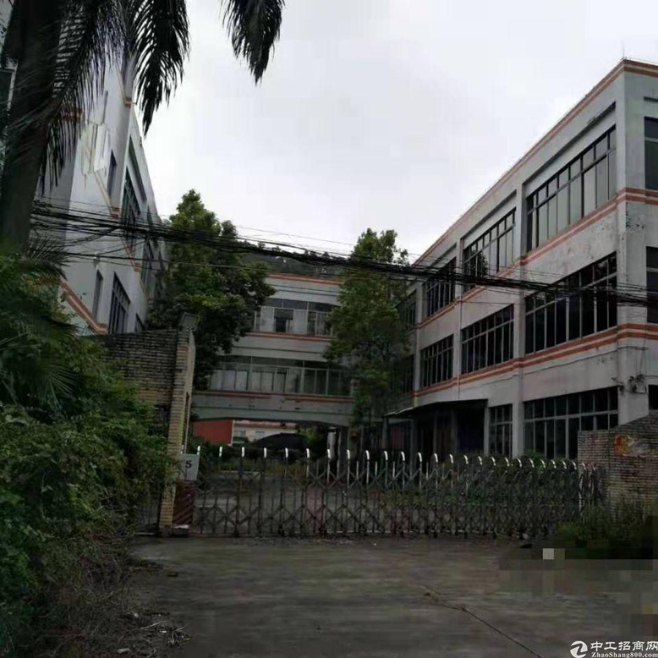 南沙园林式独院工业厂房总面积22000平方,证件齐全可办环评