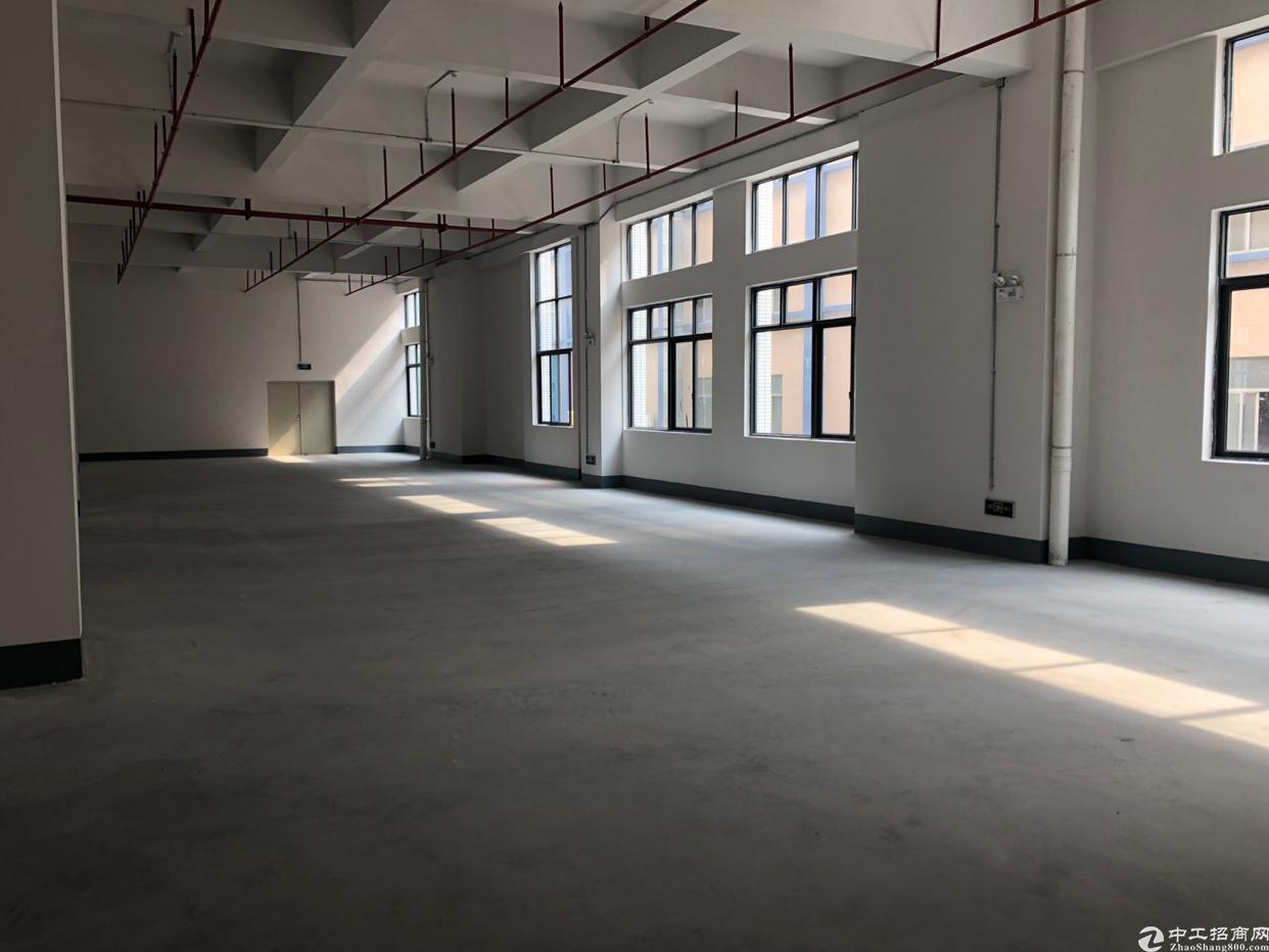 单层面积3000平方标准厂房出租