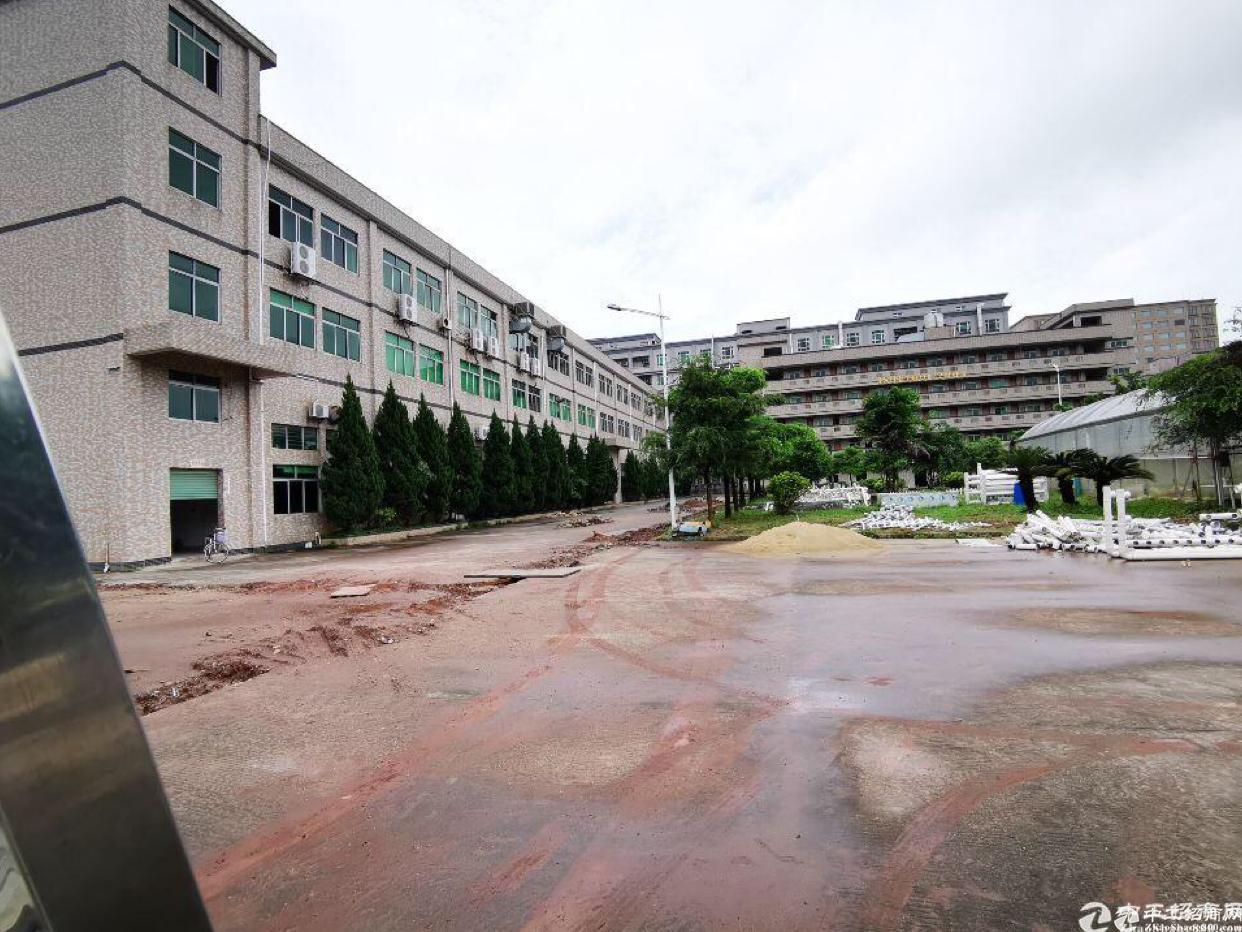 东部快线路边花园式村委合同厂房出售
