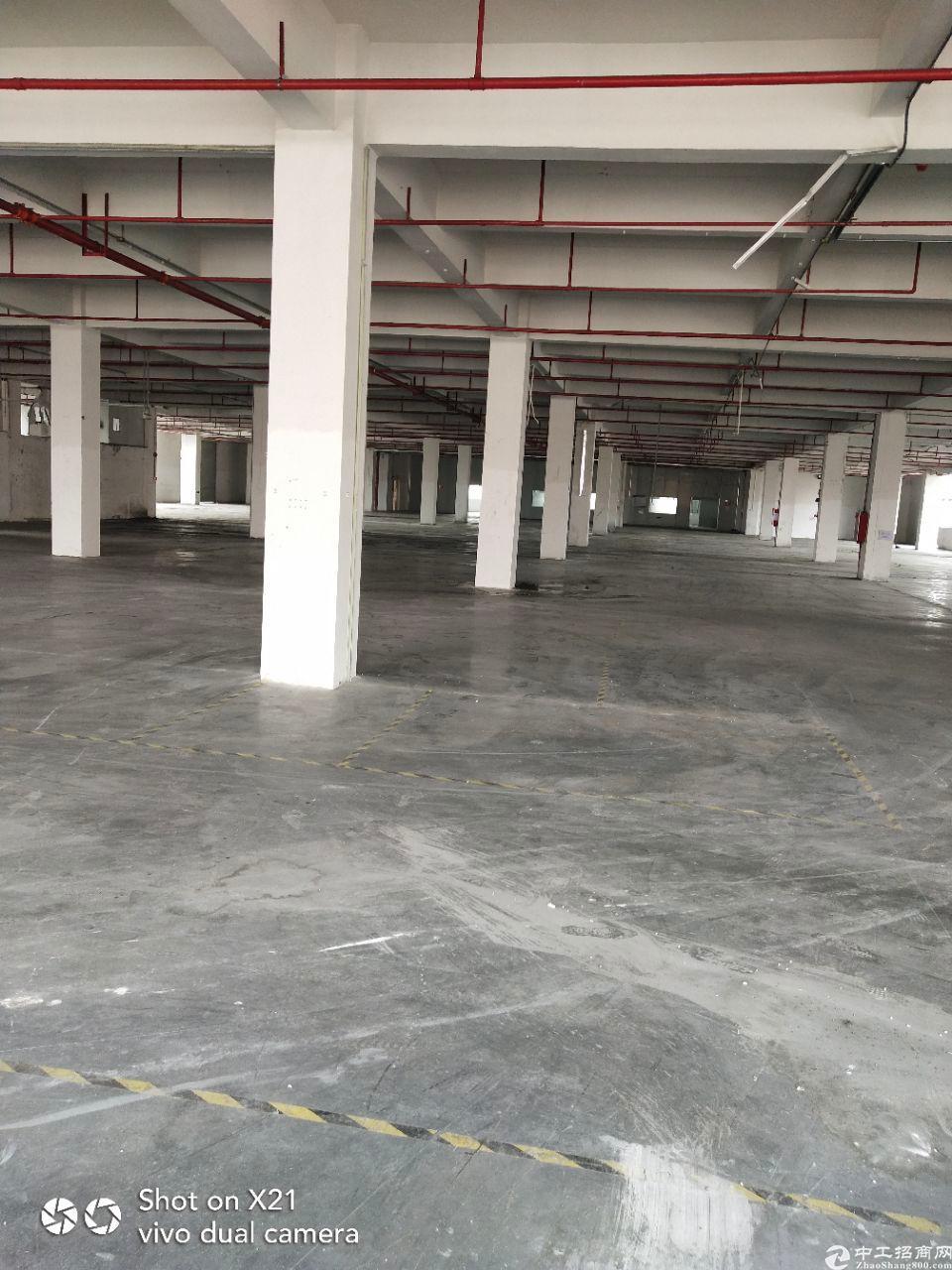 大岭山镇独院厂房出租4500平方