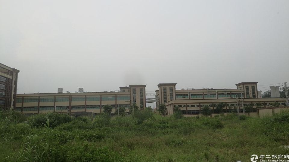 白花国有证厂房占地3万,建筑35,000售价7500万。