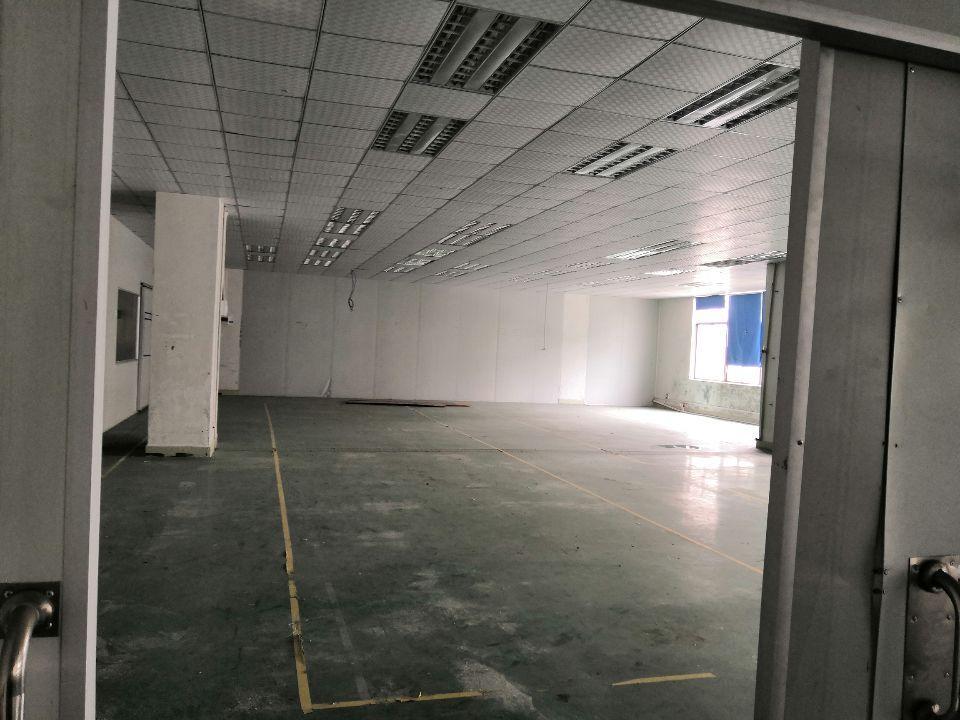 惠城区惠环平南车管所旁原房东2900平分租