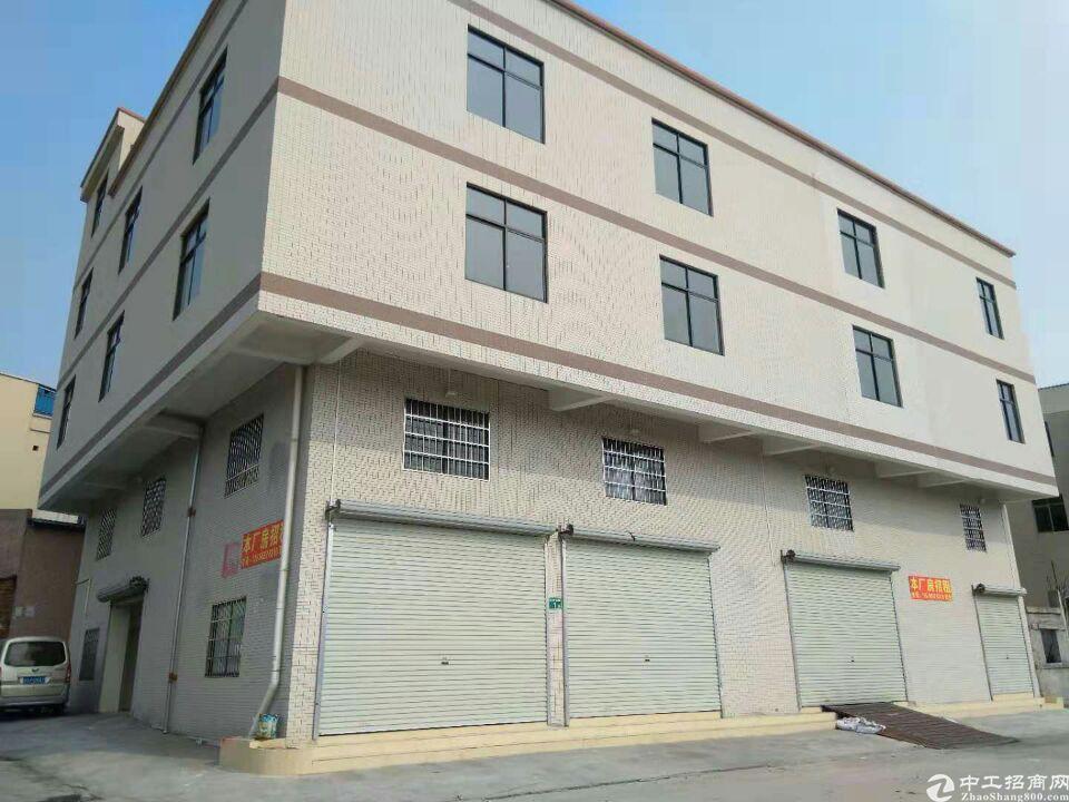 南村标准一楼330方仓库出租
