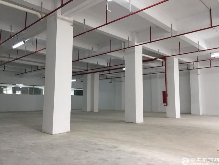 厚街镇双岗村新出原房东仓库招租1500平方,可以建冷库,