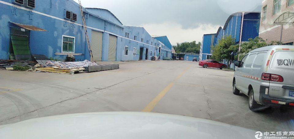 新圩镇超大空地钢构1800平米大小分租