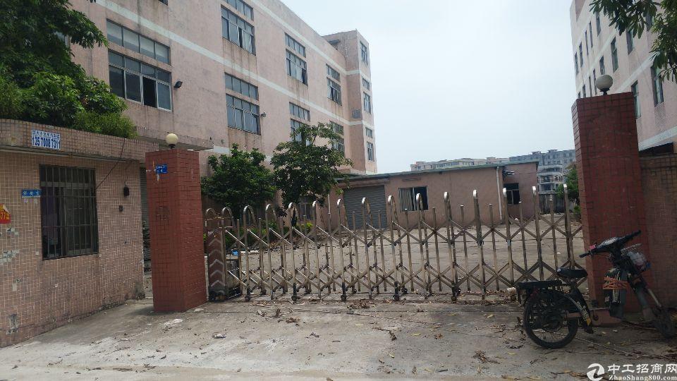 高埗新出花园式原房东独门独院建筑面积8200平厂房1一3F