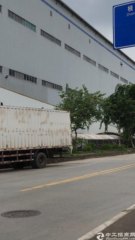 广州黄埔区红山最小320平厂房仓库最大5000平靠近黄埔东路