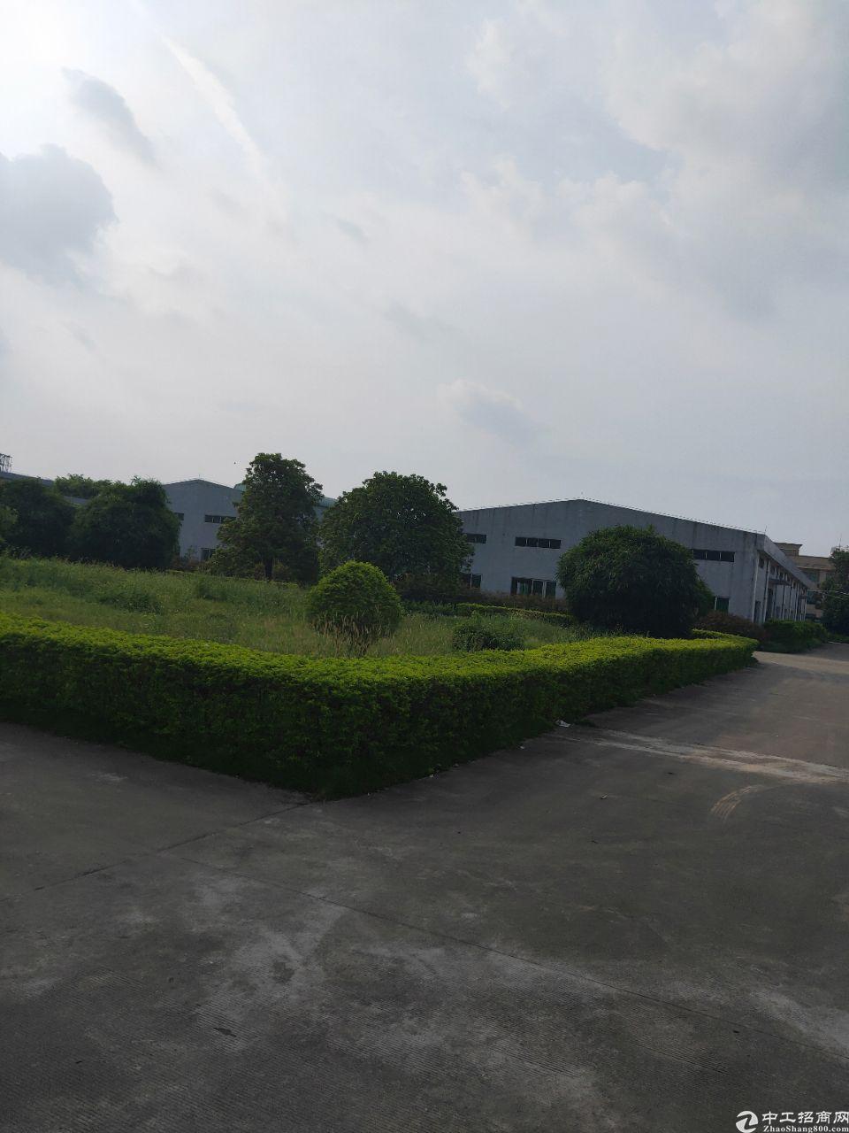 博罗龙溪,花园式独院钢构单一层12000平!原房东