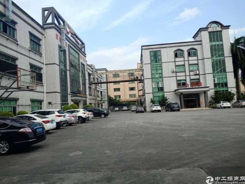 新出村委带红本厂房分租三楼1200平,独立办公楼350平