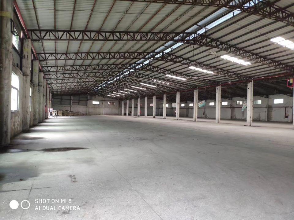 观澜主干道边上新出临时仓库3万平,空地1万平,滴水8米,