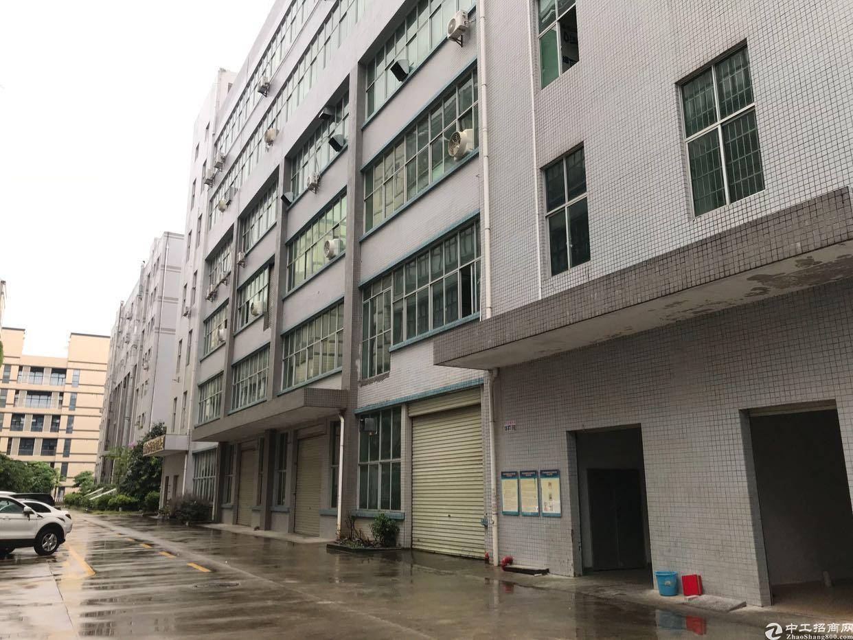 平湖华南城二楼1300平方带装修出租
