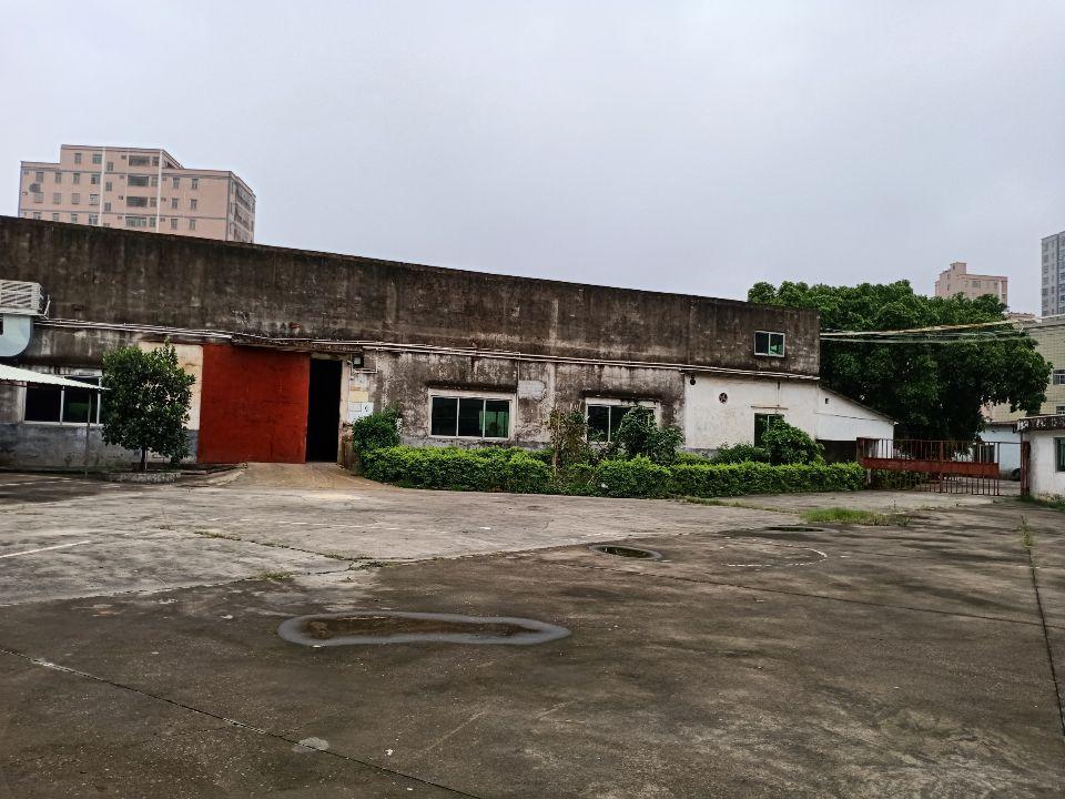 惠阳秋长独门独院原房东钢构厂房10500招租