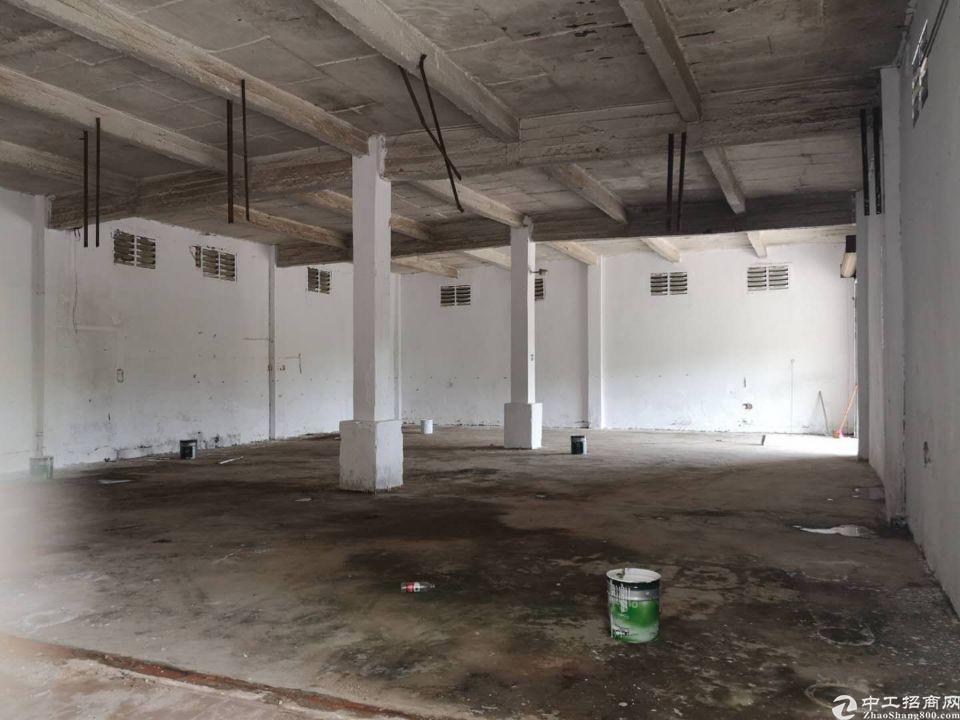 天河区珠吉吉山新出一楼标准厂房仓库1300平出租、证件齐全-图8