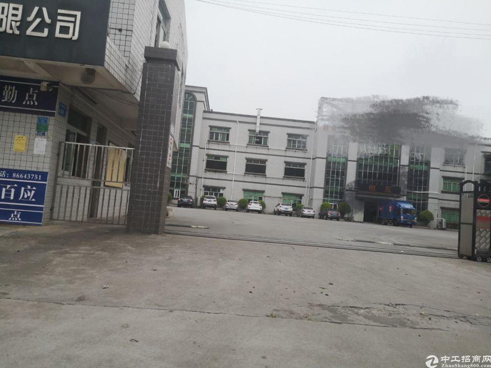 茶山镇新出带印刷牌照厂房1300平米招租