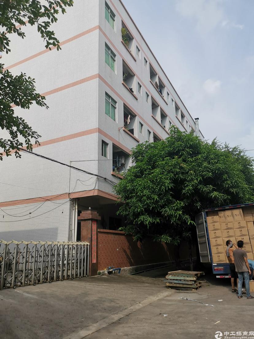 大朗镇超靓原房东独院标准厂房1-3层5400平方米,一楼5-图2