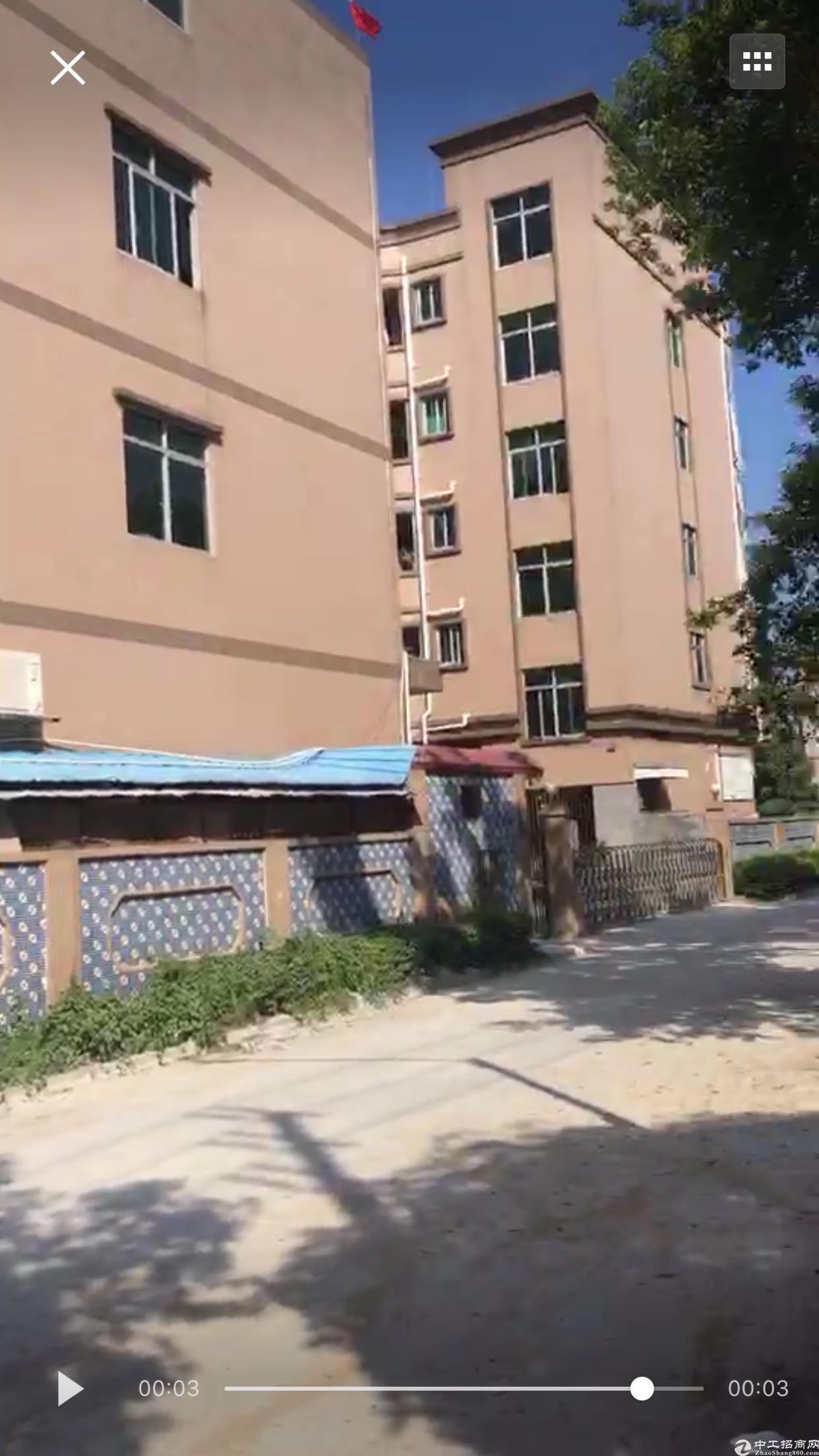 东莞集体证12000平方、两个小独院标准厂房才卖2800万