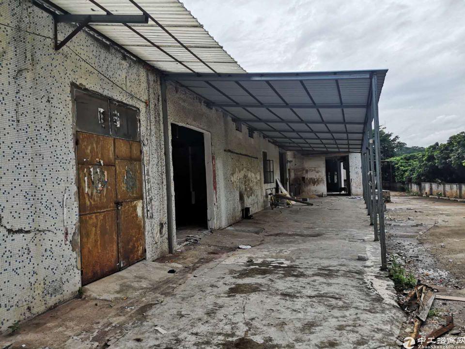 天河区珠吉吉山新出一楼标准厂房仓库1300平出租、证件齐全-图2