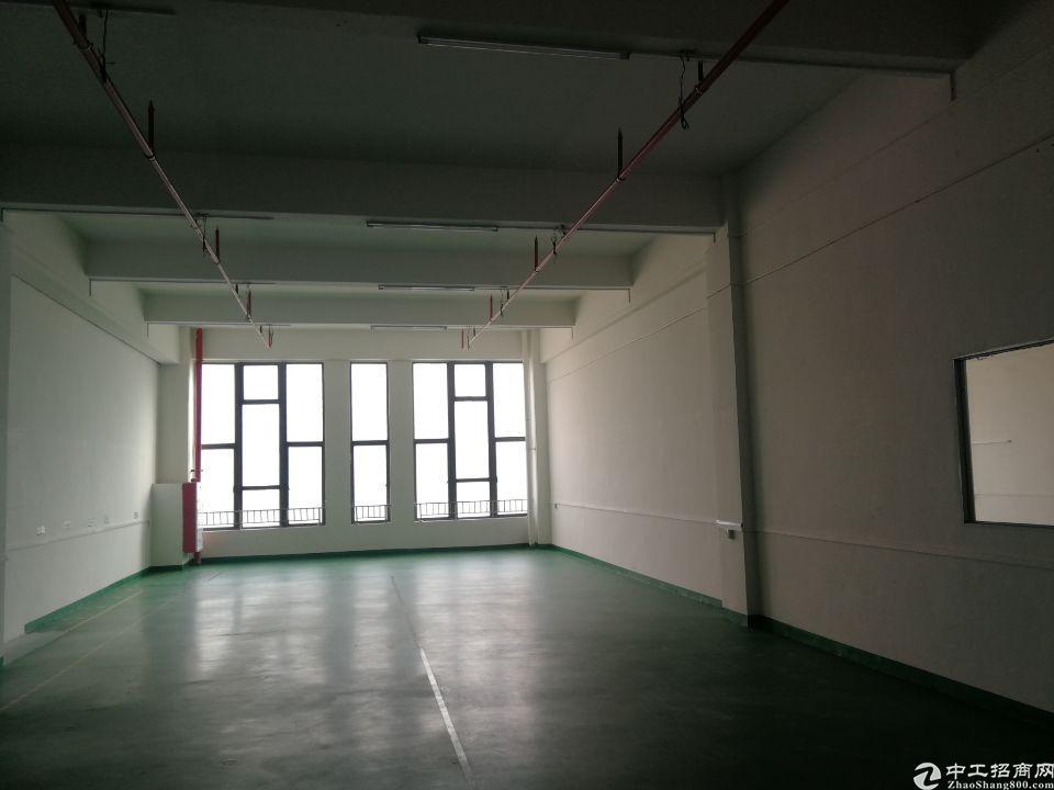 清溪镇中新出办公室装修1800平厂房出租
