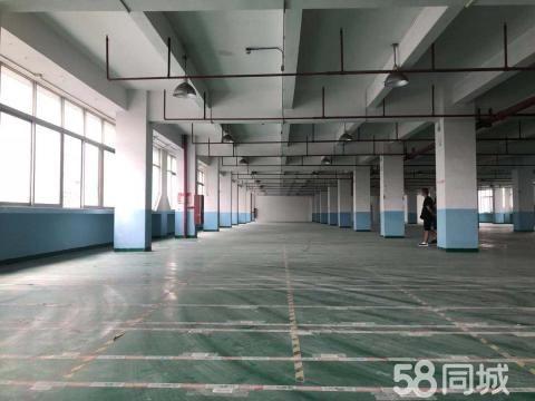 近广州(可分租)园区管理精装修2700方厂房仓库出租