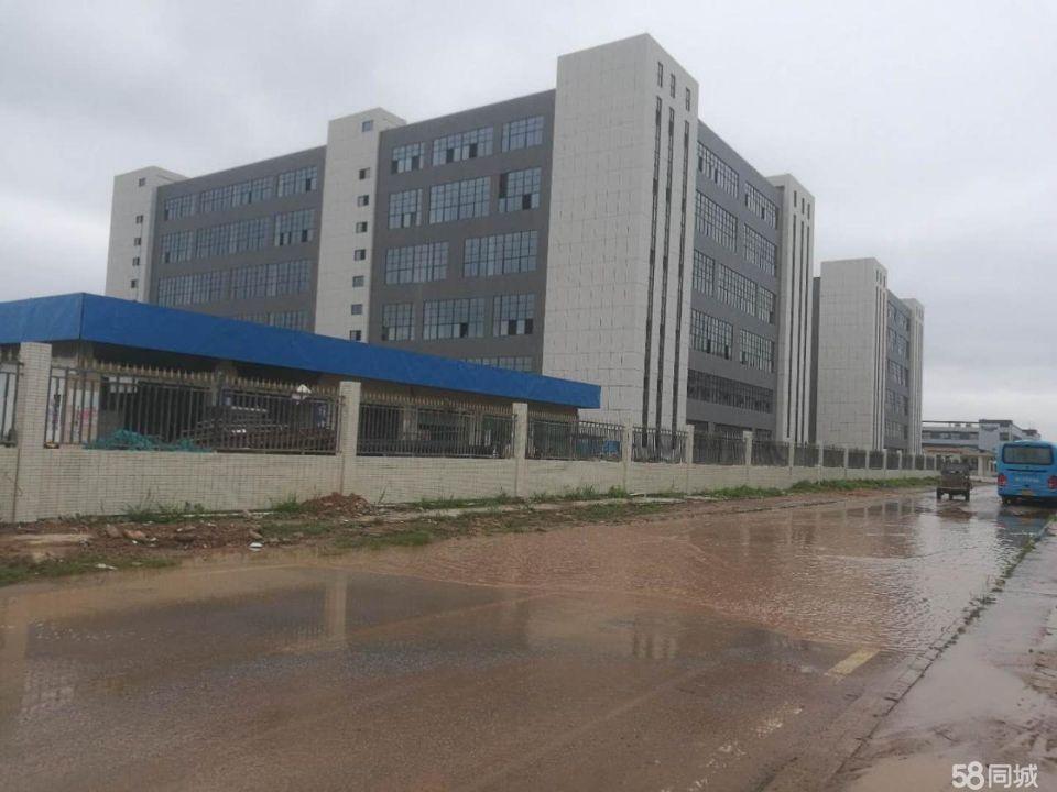 惠阳镇隆原房东出租独栋标准厂房10600平方-图3