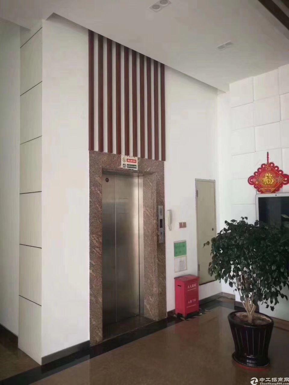 松岗原房红本工业园现有一栋四层厂房(办公搂)4700平方米-图3
