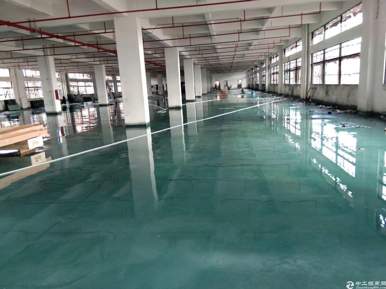 新出原房东标准独院厂房2100平方米。