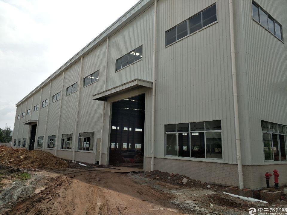 广州市新塘镇荔新公路边新建钢构厂房招租滴水14米能办环评