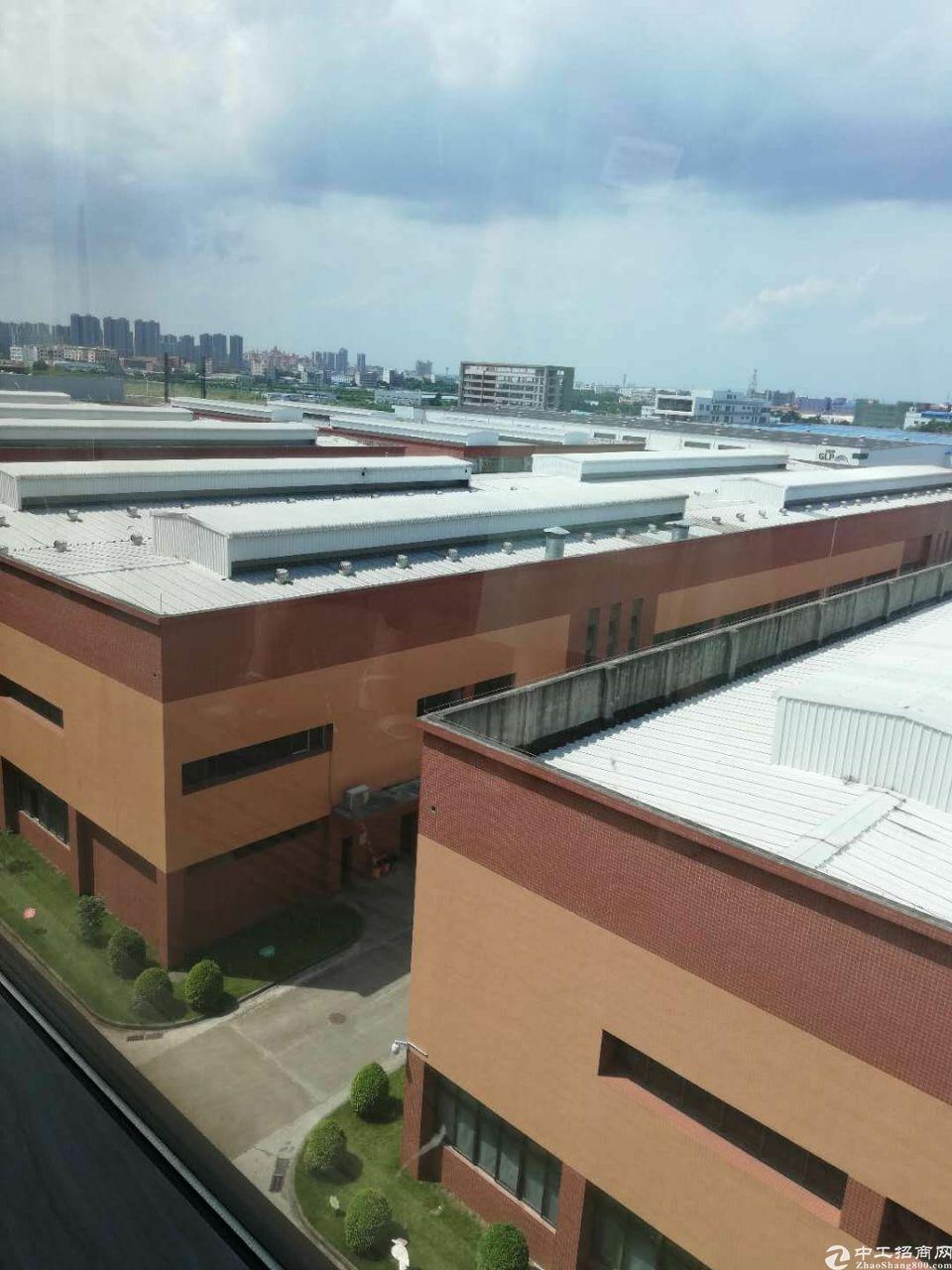 江门可做物流!长300米高15米钢构厂!国有证超大空地高速旁