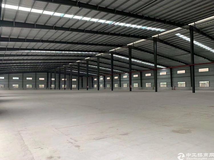 望牛墩全新9米高钢结构厂房9800平米适合机械物流仓储等行业