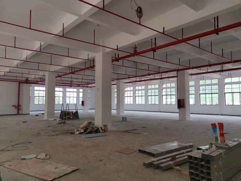 博罗新出世界级标准工业区厂房一楼6.5米租12块钱
