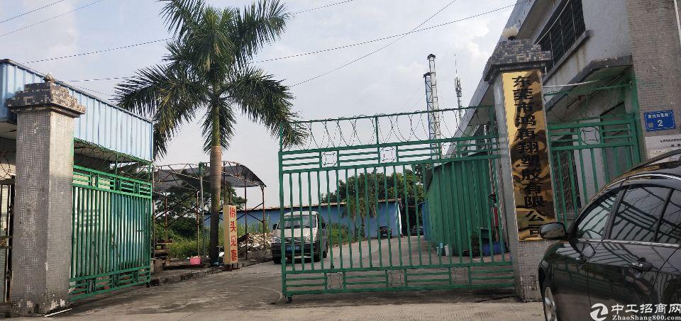 茶山镇独院原房东单一层1500平米