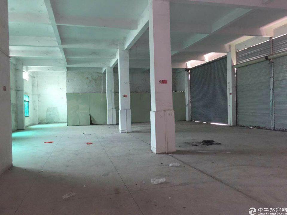 惠城区新出标准一楼6米高800平仓库招租
