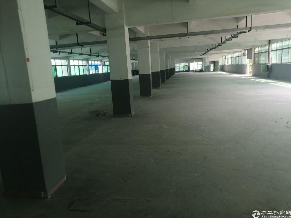横沥镇原房东现成消防办公室标准厂房4500平方独门独院出租