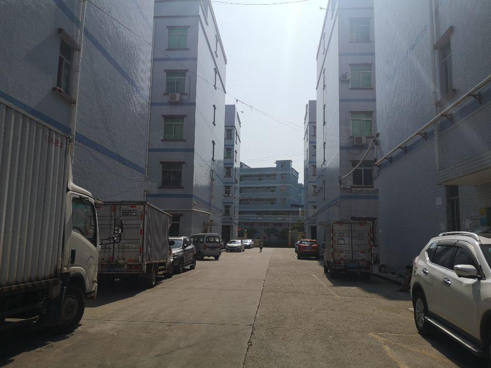 凤岗五联新出3楼600平米现成精装修厂房出租