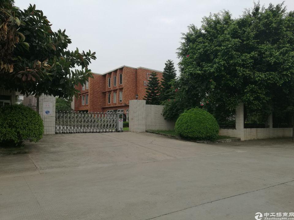 茶山镇独院单层砖墙到顶4000平方厂房招租